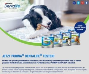 Purina Zahnpflegesnack testen