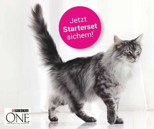 Katzenfutter gratis Produktprobe